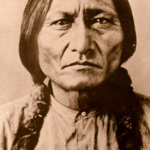 The Story of Sitting Bull card image