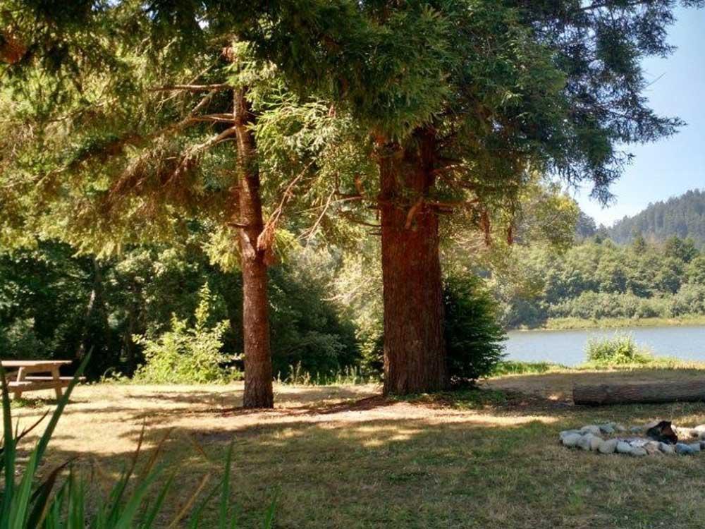 Redwood rv park3