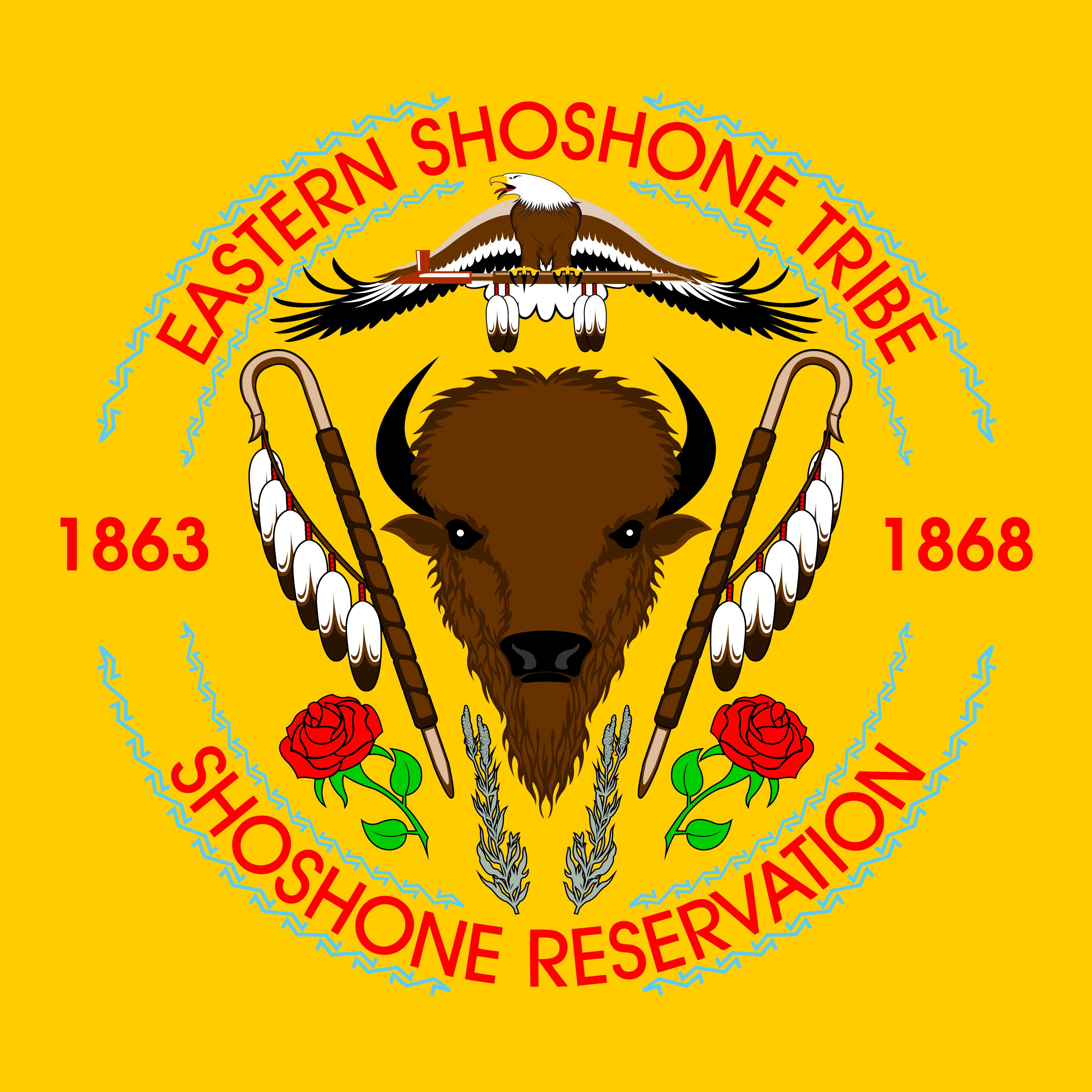 Eastern shoshone flag